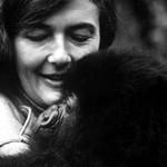 Diana Fossey-život zasvätený ochrane goríl
