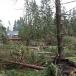 Veterná kalamita zasiahla takmer celé územie TANAPu. Oproti prvým odhadom sú škody zrejme až štvornásobne vyššie