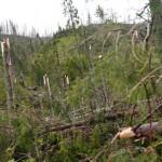 Minister Peter Žiga: Škody na tatranských chodníkoch sú porovnateľné s kalamitou v roku 2004