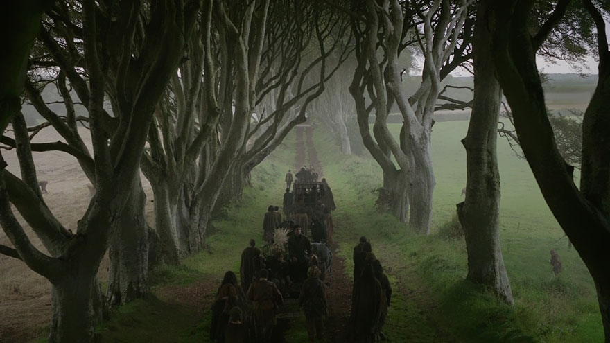 stromy_tunel12