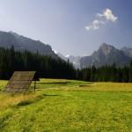 Lúky v chránenom území kosia kosami