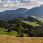 Indikátory zeleného rastu v SR inšpirované OECD