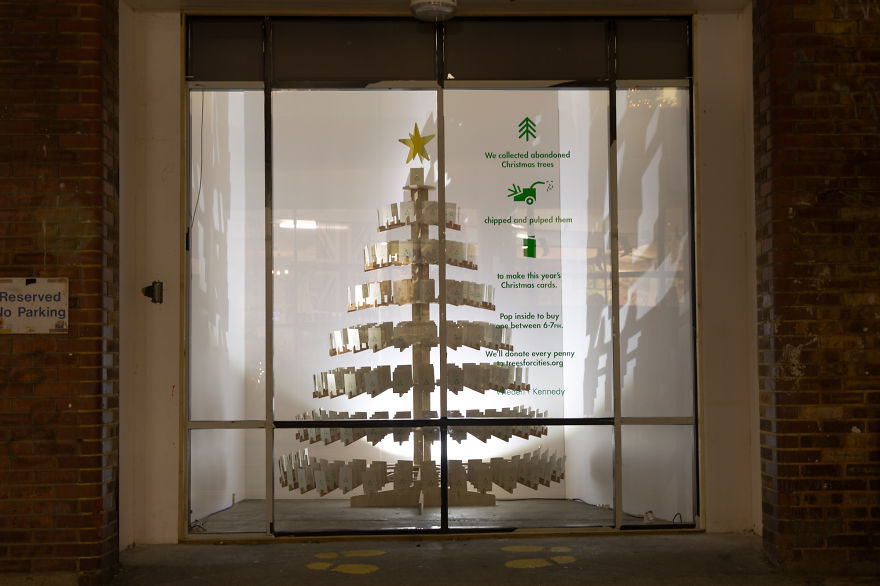 Christmas-cards-made-from-last-years-abandoned-Christmas-trees-__880
